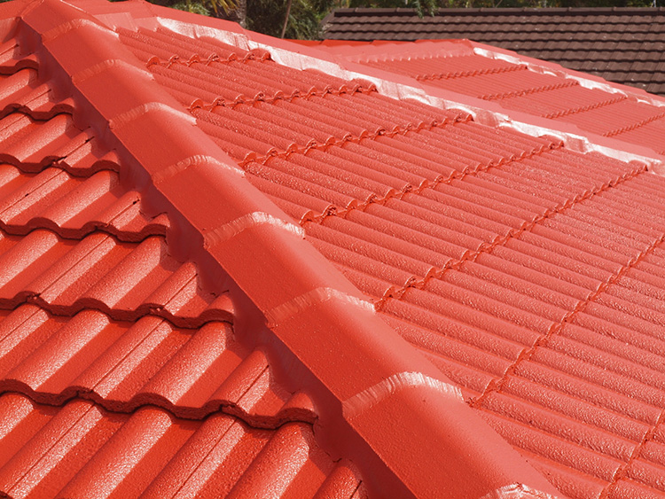 Roof Maintenance: Brisbane North, Brisbane south, Bayside, Redlands, Logan, Caboolture