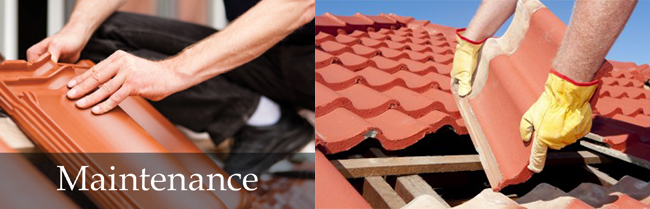 Roof Maintenance: Brisbane Bayside, Redlands, Logan